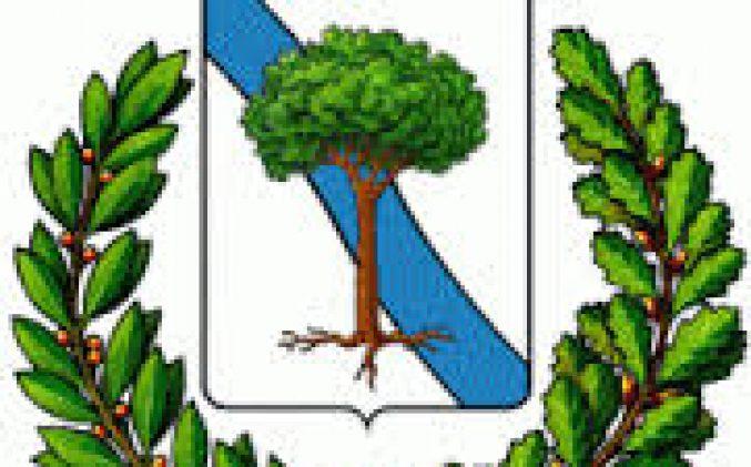 Comune di Morigerati (SA) – Avviso Pubblico